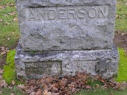 Lizzie Jane Anderson