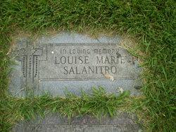 Louise M Salanitro