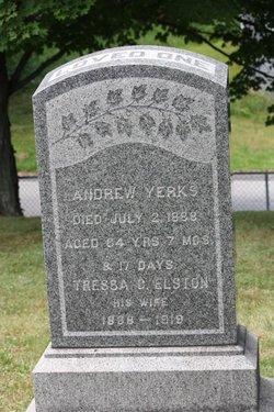 Andrew Yerks