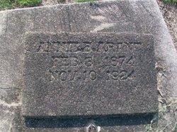 Annie B Arant