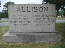 Elisha Montgomery Allison