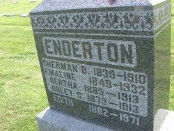 Sherman B. Enderton