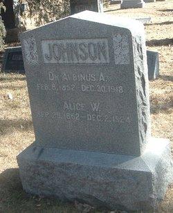 Dr Albinus A Johnson