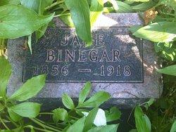 Minerva Jane <i>Aldrich</i> Binegar