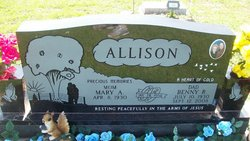 Mary A. Allison