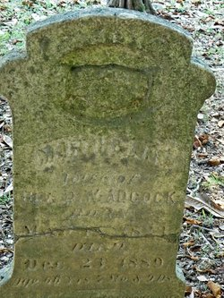 Martha Ann <i>Crow</i> Adcock