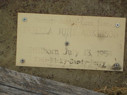 Pamela June Adkisson