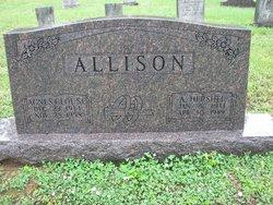 Ammon Hershel Allison