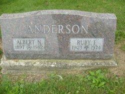 Albert Nelson Anderson