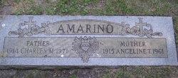Angeline T. Amarino