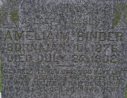 Amelia M Binder