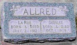 Desolee Allred