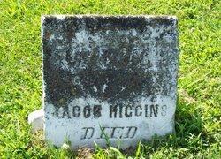 Eliza Jane <i>Wesner</i> Higgins