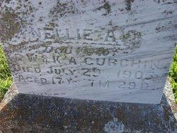 Nellie A. Curchin