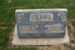 Albert P Curtis