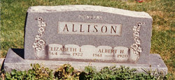 Albert H Allison