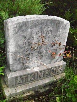 Sarah Ann Sally <i>Love</i> Atkinson