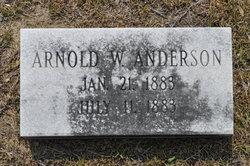 Arnold W Anderson