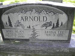 Mike Allan Arnold