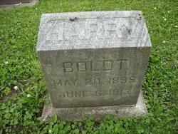Harry Boldt