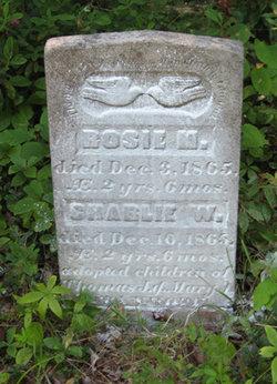 Rosie M Stanhope