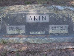 Ernestine Drucilla <i>Wilson</i> Akin