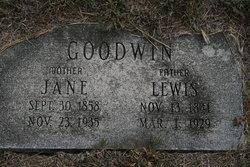 Mary Jane <i>Goodwin</i> Goodwin