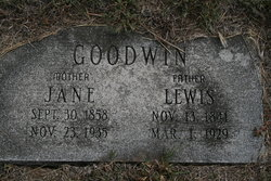 Lewis A Goodwin