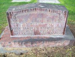 Harry Samuel Salter