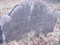 Henry Walbridge