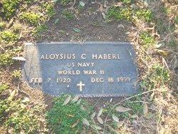 Aloysius C Haberl