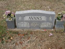 Harvey W Avans