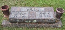 Sylvia Mae <i>Bridges</i> Young