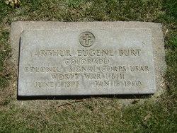 Arthur Eugene Burt