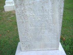 Telitha C <i>Lamar</i> Ferguson