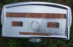 Albert Paul Allen Elliff