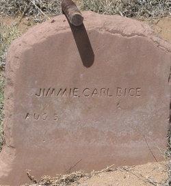 Jimmie Carl Bice