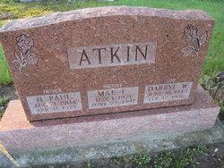 Paul Harvey Atkin