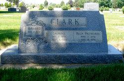 Della <i>Palfreyman</i> Clark