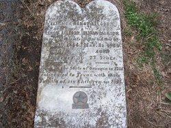 Elijah P. Allcorn