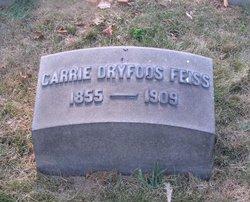Caroline Carrie <i>Dryfoos</i> Feiss