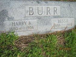 Bessie Burr