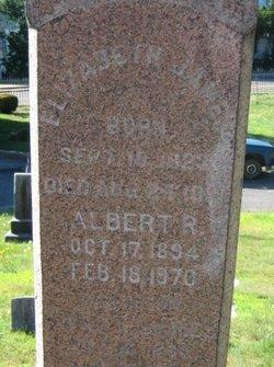 Albert R James