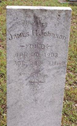 James H Johnson