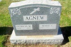 Patricia M Agnew