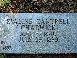 Evaline Aveline <i>Cantrell</i> Chadwick