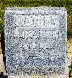 Elizabeth Sarah <i>Barnes</i> Angell