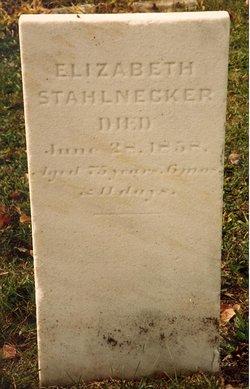 Elizabeth <i>Truckenmiller</i> Stahlnecker