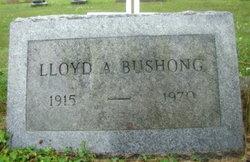 Lloyd A Bushong