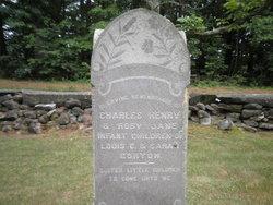 Charles Henry Gorton